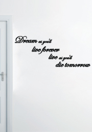 מדבקת קיר - Dream as you'll live forever live as you'll die tomorrow